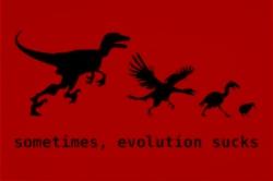 sometimes evolution sucks